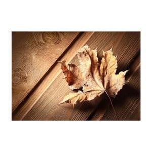 Vinylová předložka Leaf, 52x75 cm