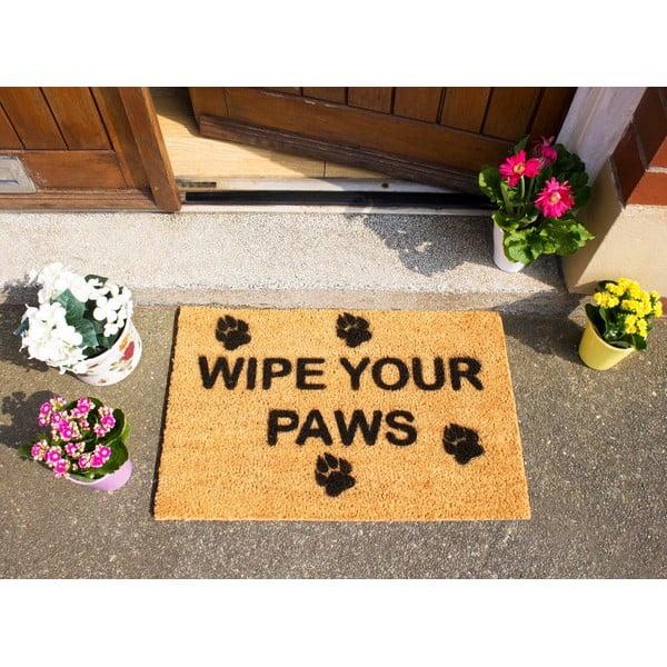 Rohožka Artsy Doormats Wipe Your Paws,40x60cm