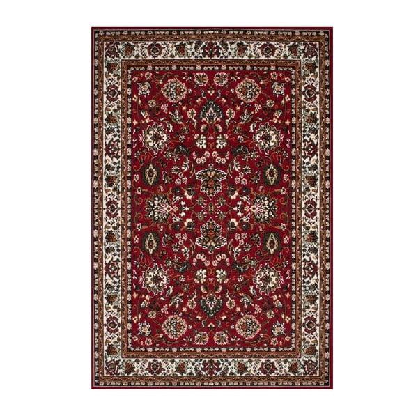 Koberec Irshi Red, 120x170 cm