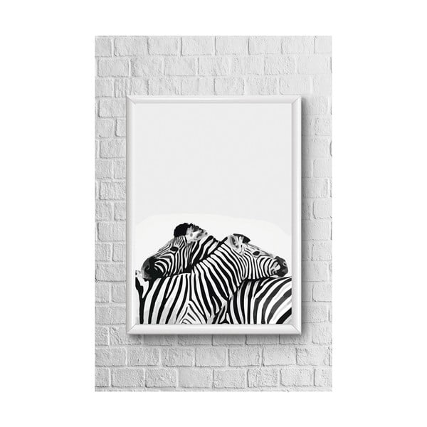 Two Zebras poszter - Piacenza Art