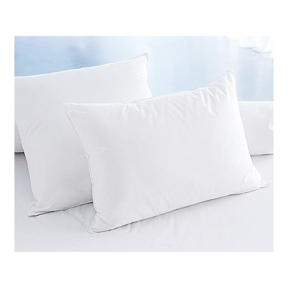 Sada 2 polštářů White, 50 x 70 cm