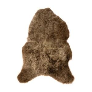 Hnědá ovčí kožešina s krátkým chlupem Arctic Fur Ptelja, 100x60cm