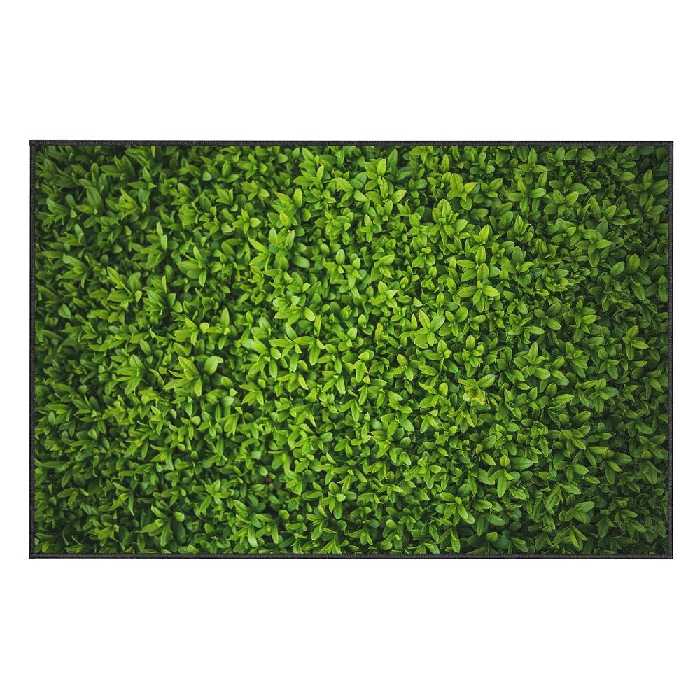 Zelený koberec Oyo home Ivy, 80 x 140 cm
