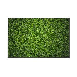 Covor Oyo home Ivy, 100x140cm, verde