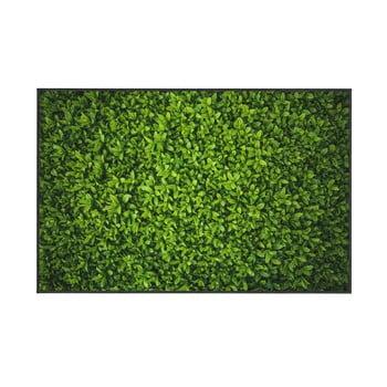 Covor Oyo home Ivy, 140x220cm, verde de la Oyo home