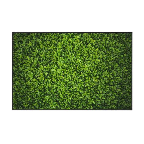 Covor Oyo home Ivy, 80x140cm, verde