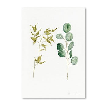 Poster Americanflat Two Eucalyptus Pieces By Shealeen Louise, 30 X 42 Cm