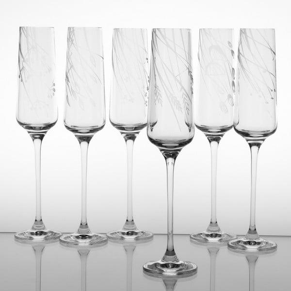 Ateliér Žampach, set 6 ks skleniček na šampaňské Traviny dolů