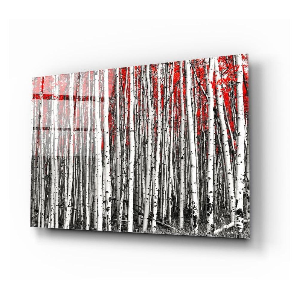 Skleněný obraz Insigne Birches
