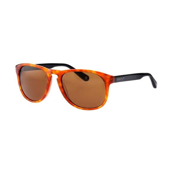 Pánské sluneční brýle GANT King Honey