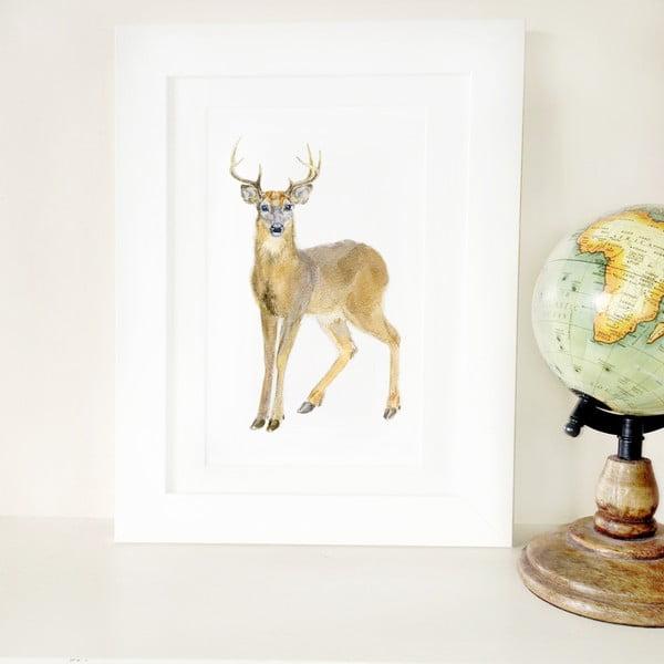 Plakát Deer A4