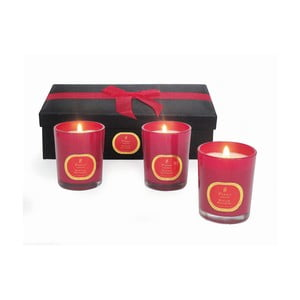 Set svíček Winter Wonders Cinnamon & Clove, 3 ks