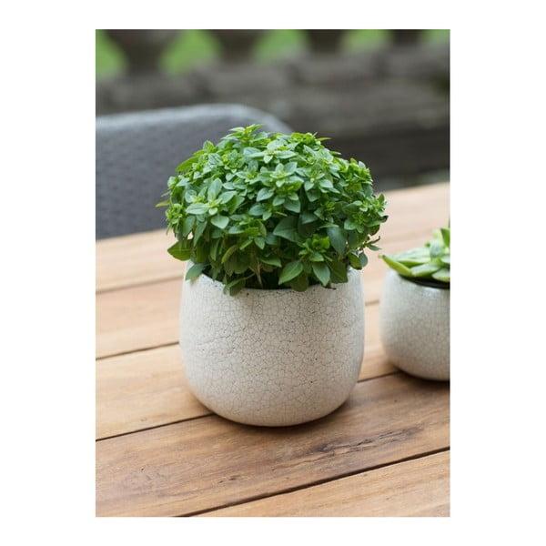 Bílý květináč Garden Trading Ravello, ⌀15,5cm