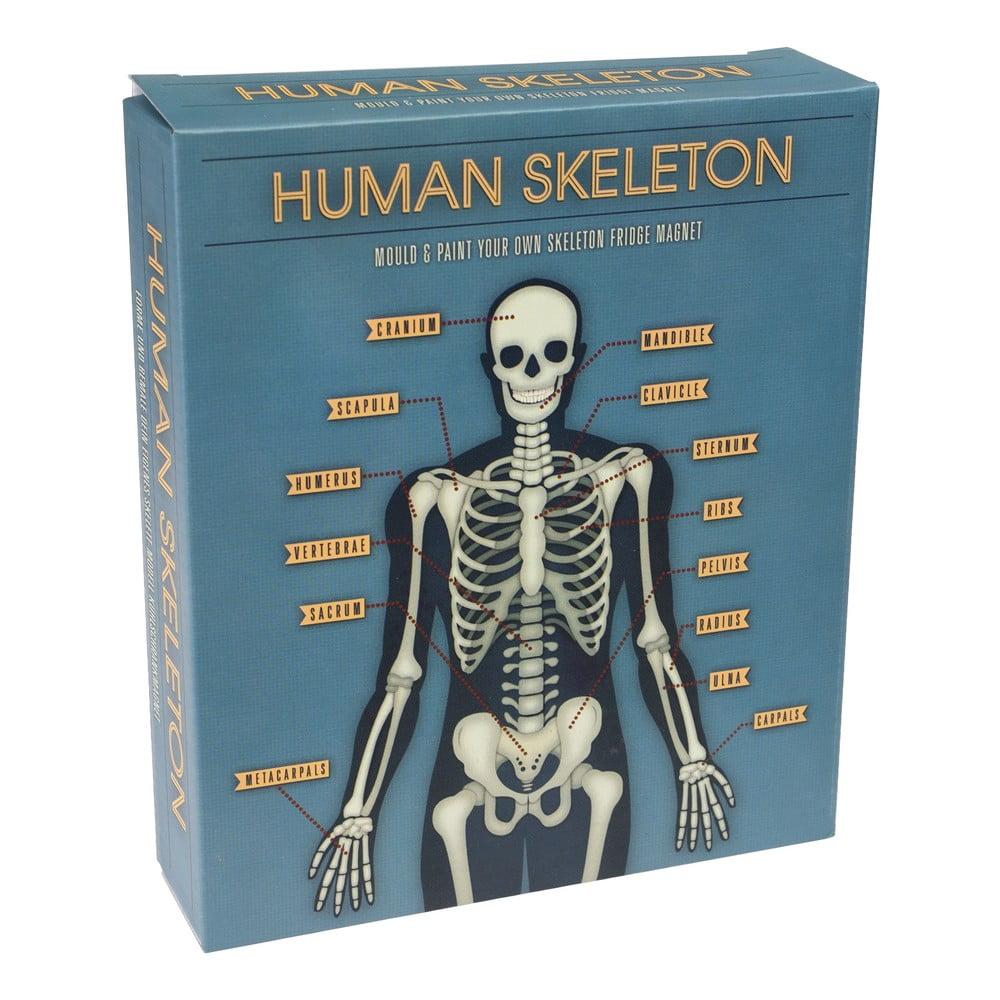 Skládací magnet svítící ve tmě Rex London Dark Skeleton Magnet