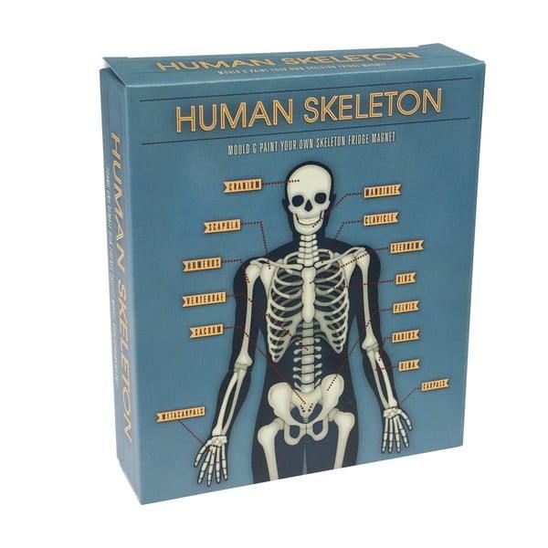 Skeleton Magnet sötétben világító mágneses játék - Rex London