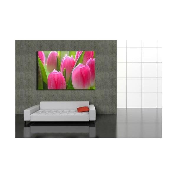 Fotoobraz Tulipány, 90x60 cm