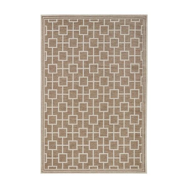 Hnedý koberec vhodný aj do exteriéru Botany, 160 × 230 cm