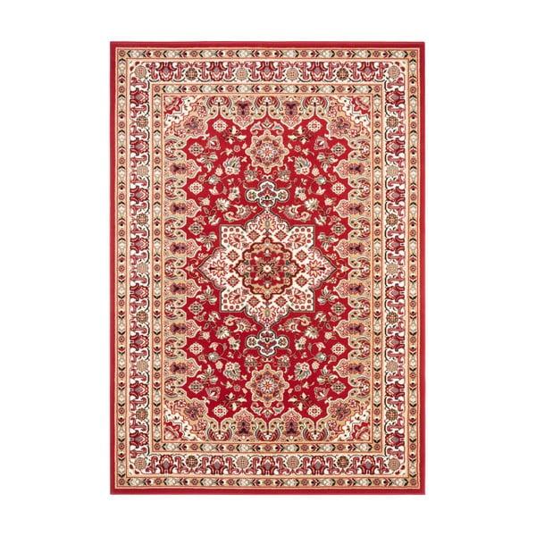 Czerwony dywan Nouristan Parun Tabriz, 120x170 cm