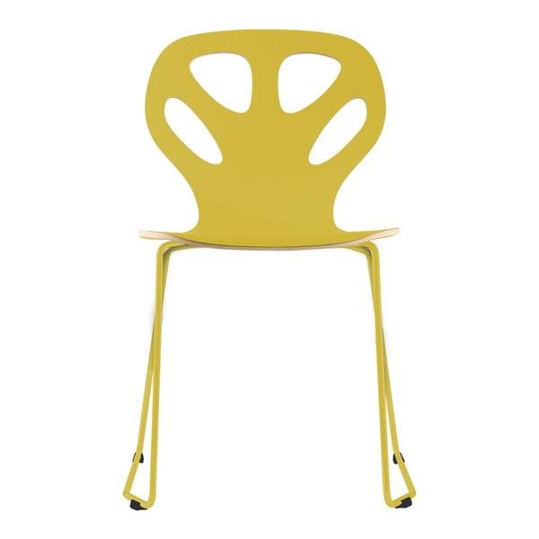 Židle Maple,  žlutá