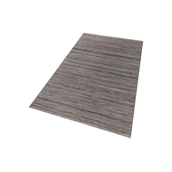 Šedý koberec vhodný i na ven Lotus, 200x290cm