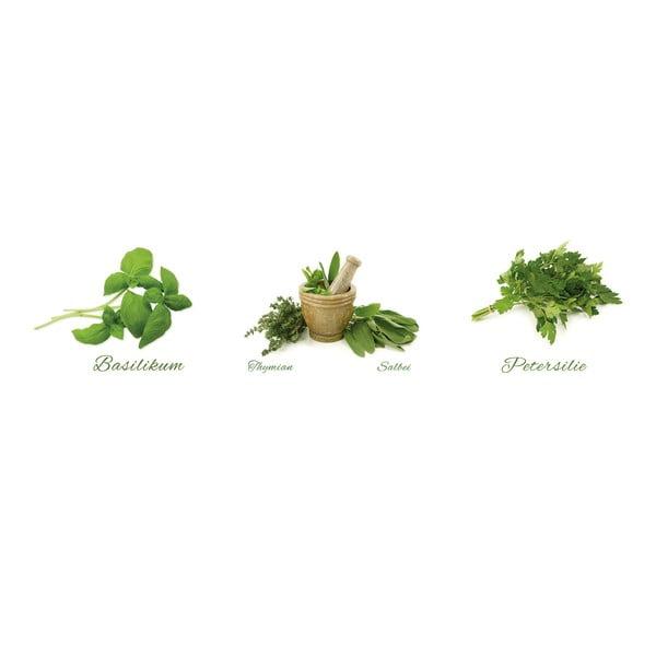 Samolepky Different Herbs