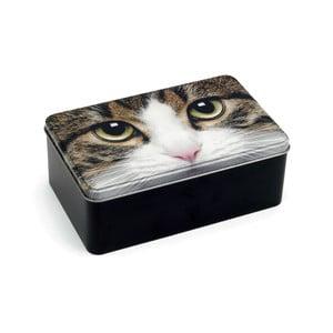 Plechová dóza Tabby Cat
