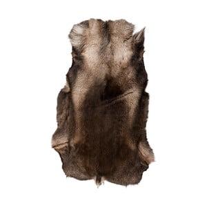 Tmavě hnědá sobí kožešina Arctic Fur Reino, 120x100cm