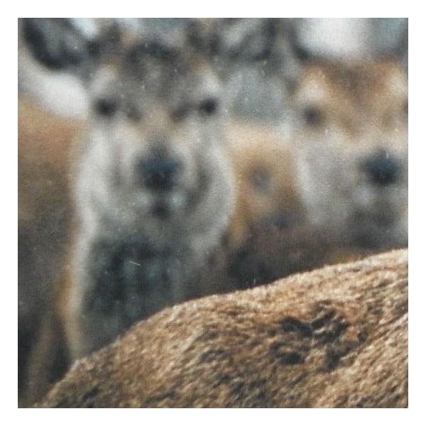 Předložka Winter Deer 75x50 cm