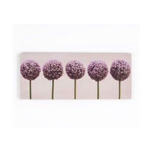 Obraz Graham & Brown Row Of Alliums, 100 x 40 cm