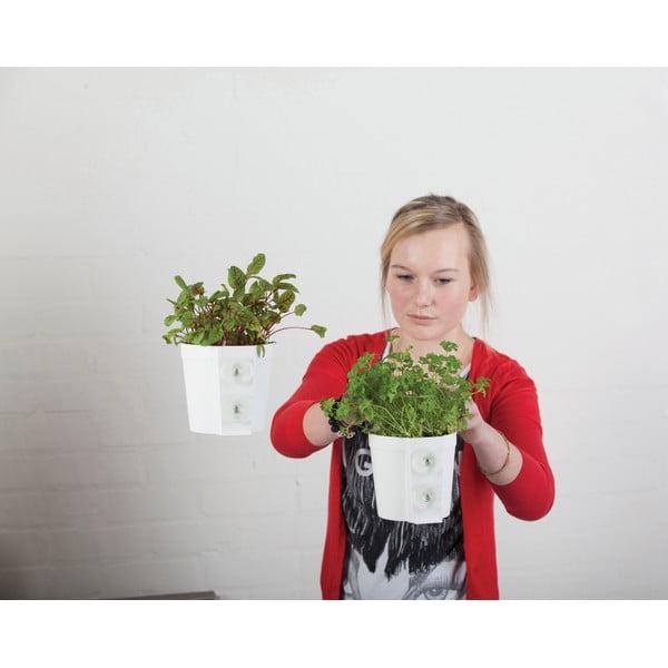 Sada 2 květináčů s přísavkou Esschert Design Surprise, výška 12cm