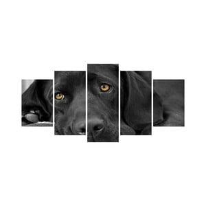 Vícedílný obraz Black&White no. 55, 100x50 cm