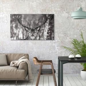 Obraz na plátně OrangeWallz Deer, 70 x 118 cm