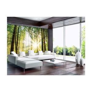 Velkoformátová nástěnná tapeta Vavex Forest, 368 x 280 cm