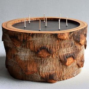 Palmová svíčka Legno s vůní vodního květu, 500 hodin hoření