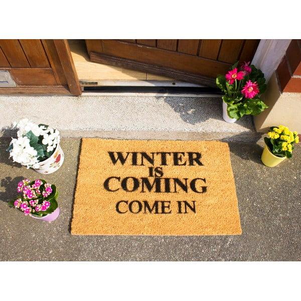 Rohožka Winter Is Coming,40x60 cm
