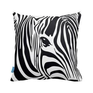 Povlak na polštář Zebra, 43x43cm