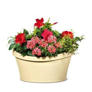 Venkovní květináč Living 40x40 cm, světlý