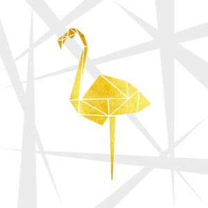 Obraz Canvas Framework Flamingo, 50 x 50 cm