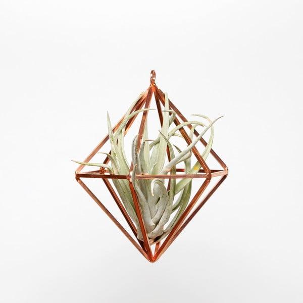 Závěsné terárium s rostlinou Urban Botanist Prism Small, světlý rám