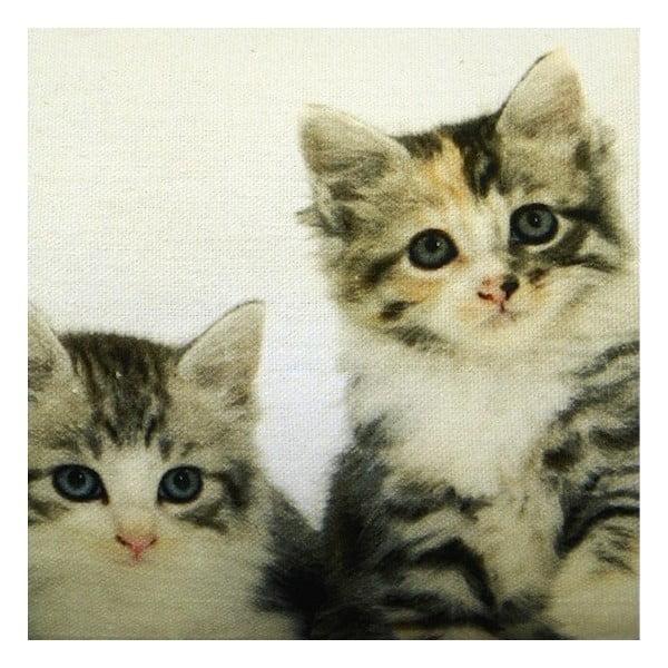 Polštář Kittens 20x90 cm