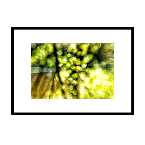 Jiskry, autorská fotografie Borise Stojanova (černý rám)