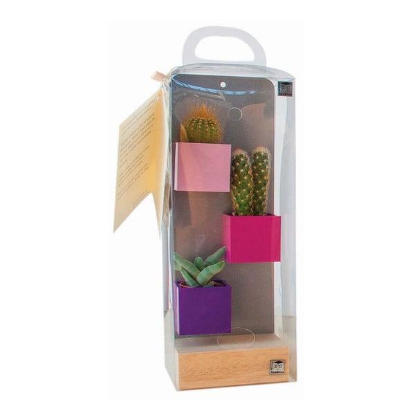 Sada 3ks malých magnetických květináčů s podstavcem a rostlinami, fialová