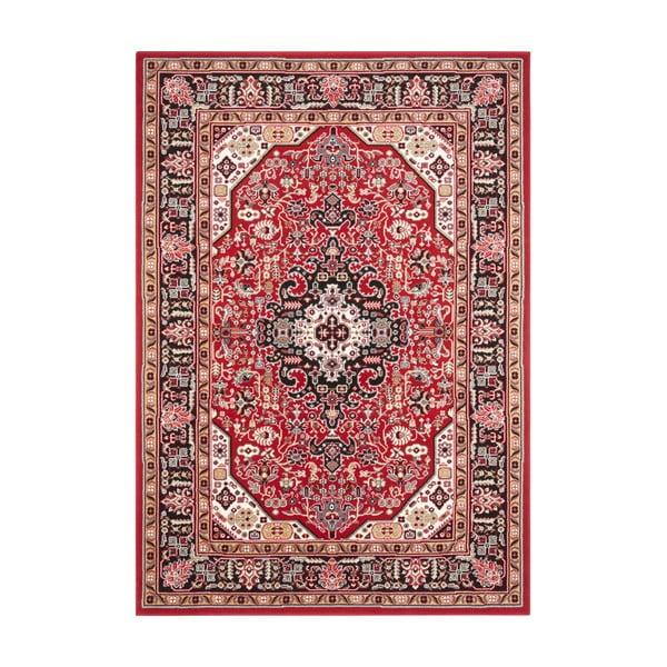 Czerwony dywan Nouristan Skazar Isfahan, 120x170 cm