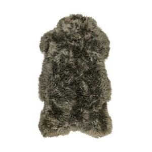 Šedá kožešina z ovčí kožešina Arctic Fur Lina, 100 x 60 cm