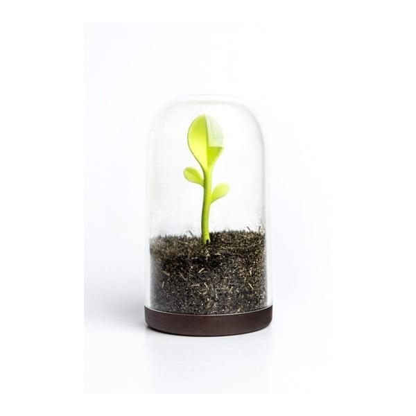 Pojemnik z łyżeczką Qualy&CO Sprout Jar