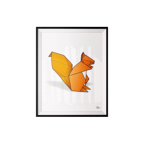 Plakát Squirrel, 30x40 cm