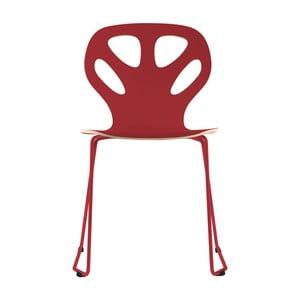 Židle Maple, bordo