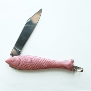 Růžový český nožík rybička