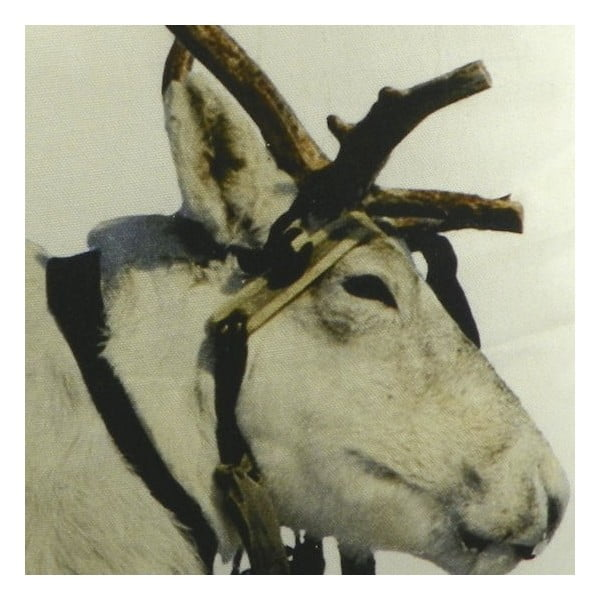Polštář Sepia Reindeer Working 50x50 cm