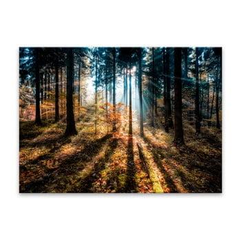 Tablou Styler Glasspik Autumn Sunset, 70 x 100 cm de la Styler